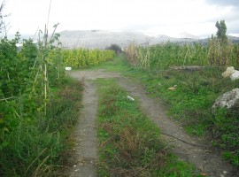 Parcela en Zafarraya