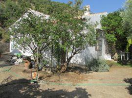 Casa Canillas