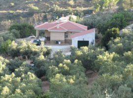 Casa Pineros